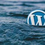 Kontrola funkčnosti externích odkazů ve WordPressu