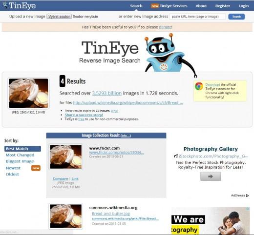TinEye - výsledek hledání