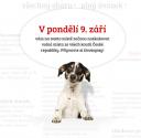 Volná místa.cz