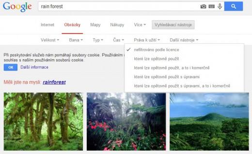 Google vyhledávání obrázků